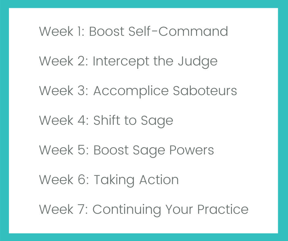 burned out stressed out OTs PTs SLPs positive intelligence mental fitness 7 week program